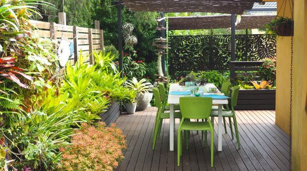 In Peter Nixon's garden, the deck is edged with easy-care bromeliads.