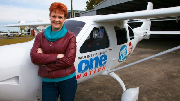 """Pauline Hanson poses in front of the One Nation plane during her """"Fed Up"""" tour."""