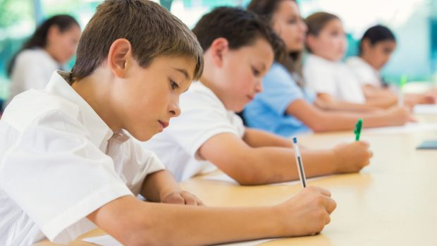 a critical review about naplan Naplan's impact on students with specific needs   view and said that the  acara website describes what naplan does rather that.