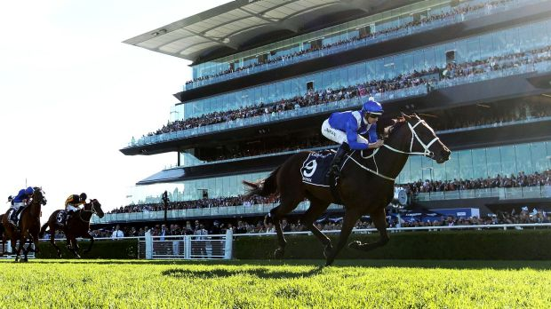 Hugh beauty: Hugh Bowman and Winx are set to call Randwick home this spring.