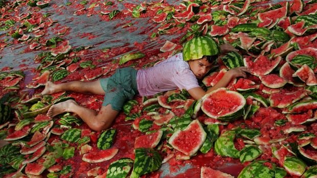 Andrew Hunter, 11, in a sea of broken melons.