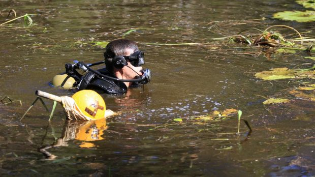 Divers from Queensland Police and the Australian Defence Force search Deagon Wetlands.