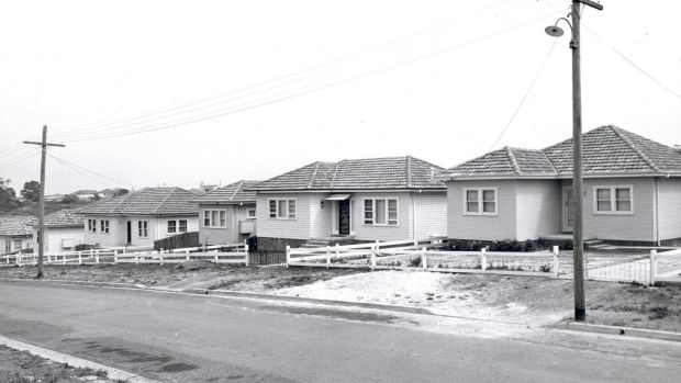 A housing development in the '50s, typical of the style of housing commission homes built in this period.