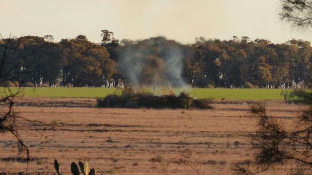 A photo taken by Office of Environment and Heritage officer Robert Strange of native vegetation being burned shortly ...