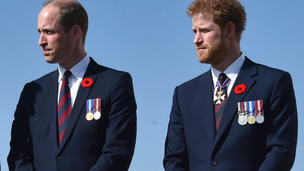 Britain's royals Prince William and Prince Harry are also pilots.