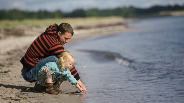 2.5 year old toddler enjoying the late summer at the beach with her dad. generic outdoors nature father young daughter ...