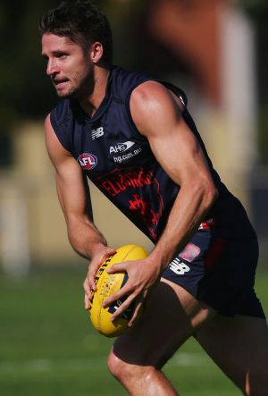 Hogan in training at Gosch's Paddock on Tuesday.