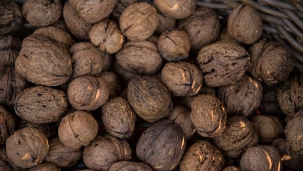"Chestnut and walnut growers had been ""absolutely smashed"", says Anne Elliott, the leader of the Slow Food movement in ..."