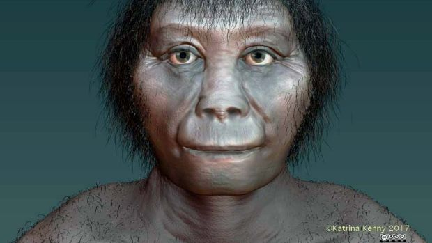 "An artist's impression of Homo floresiensis based on recent research. Dubbed a human ""hobbit"", the species of humanoid ..."