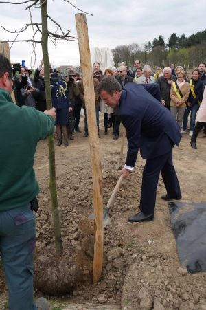 Dan Tehan plants a tree at Polygon Peace Wood.