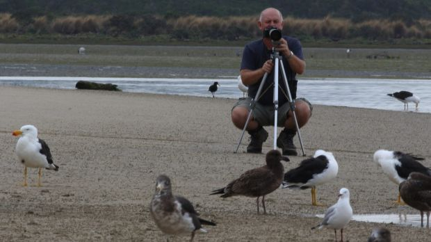 Jeff Davies with feathered friends at Shallow Inlet