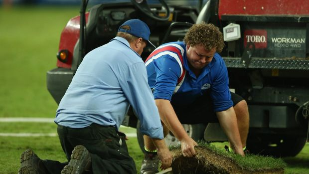 Urgent repairs: ground staff replace a piece of turf at Allianz Stadium during a Super Rugby match last season.