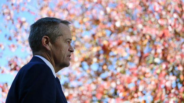 Bill Shorten speaks to media at  St Thomas More's Primary School in Canberra on Monday.