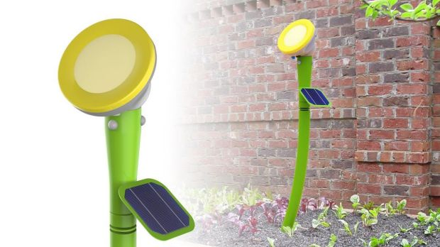 A graphic of the visual garden sensor developed by a group of Canberra entrepreneurs.