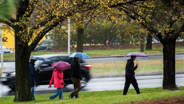 People braving the rain on Commonweath Avenue.