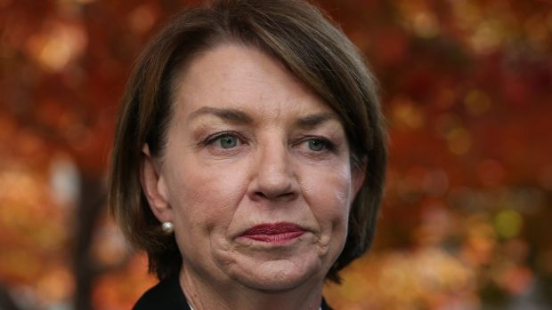 Australian Banking Association CEO Anna Bligh says the government's bank tax has been 'cooked up' and done 'on the run'.