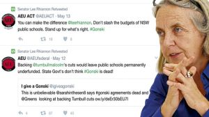 Greens senator Lee Rhiannon is under attack from her federal Greens colleagues.
