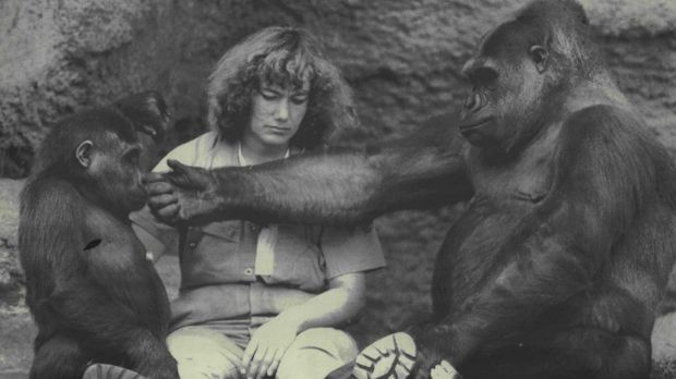 Mzuri and his mother Yuska, with keeper Ulli Weiner, on December 9, 1986.