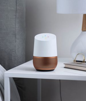 Home allows users to interact with Google Assistant around their house using natural language.