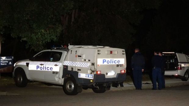 Hooded man fatally stabs a pet labrador in Perth park