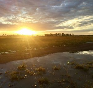 Middlemount in central Queensland received an estimated 60 millimetres.