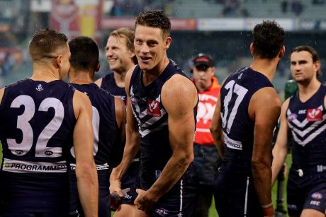 Matt Taberner of the Dockers celebrates after defeating Carlton during the round nine.