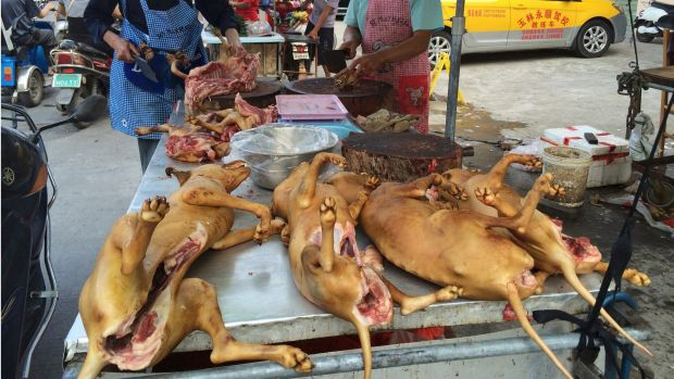 Vendors chop up dog meat for sale.