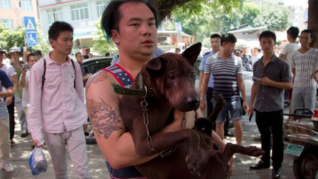 An activist, carrying a dog that he bought from a dog seller, leaves a market during a dog meat festival in Yulin in 2016.