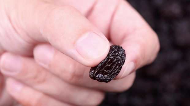 Can a humble raisin hold some answers to the way we eat?