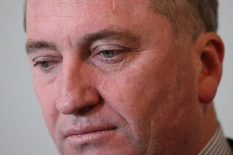 Nationals leader Barnaby Joyce has said an audit report into the pesticides authority shows the government needed to ...