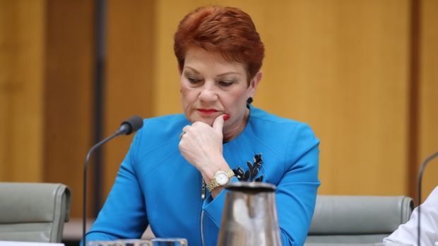 Senator Pauline Hanson will pay the ABC's legal costs after dropping a case against the broadcaster.
