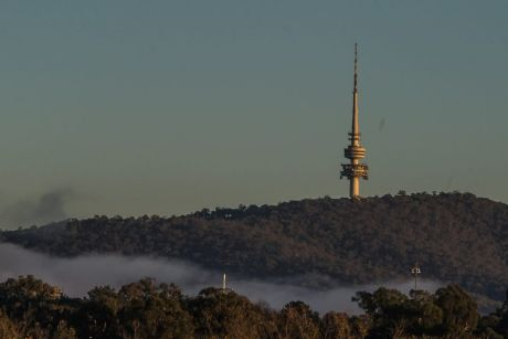 Fog on the first day of winter 2017 in Canberra.