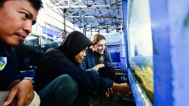 Australian volunteer Siobhan Heatwole and colleagues at the Mars Symbioscience Mariculture Facility in Takalar, Sulawesi.