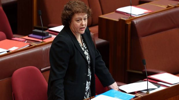 "Labor senator Jacinta Collins said she was not running a ""protection racket"" for the Catholic schools sector."