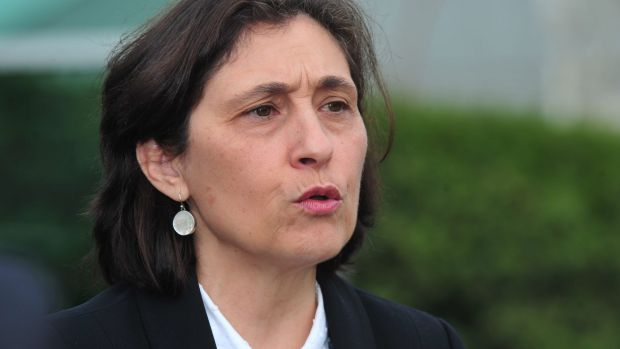 """Environment minister Lily D'Ambrosio said the proposed project was """"really exciting'."""