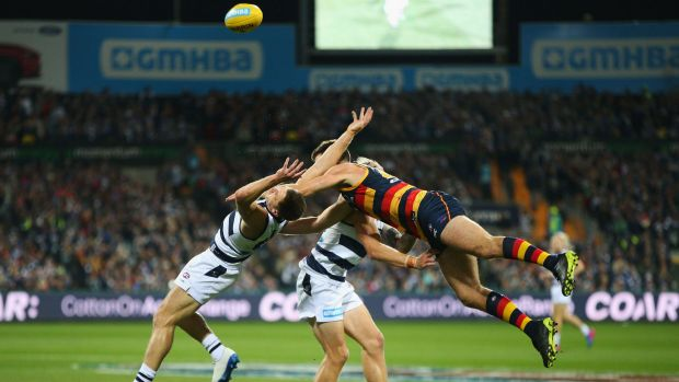 Tough: Cats captain Joel Selwood and the Crows' Andy Otten collide.