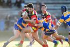 The Bulls Sheen Lomax continues being a headache for opposition teams week after week.