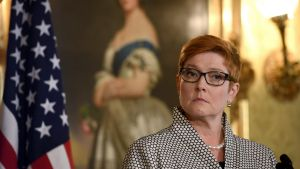 Defence Minister Marise Payne has delivered a blistering rebuke to Tony Abbott over his call to consider nuclear subs.