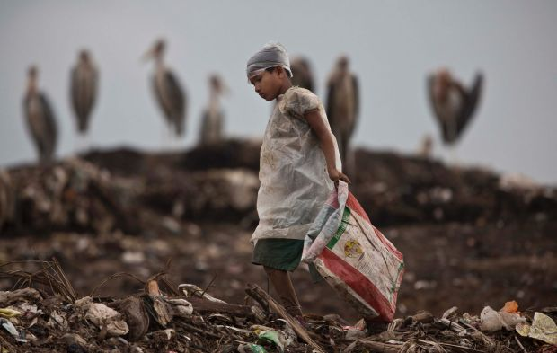 An Indian ragpicker boy searches for recyclable material as Greater Adjutant stork birds sit at a garbage dumping site ...