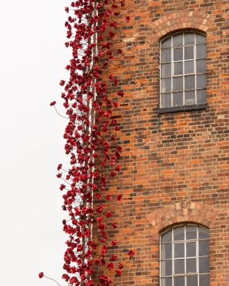 The poppy sculpture Weeping Window opens at The Silk Mill in Derby as part of a UK-wide tour organised by 14-18 NOW.