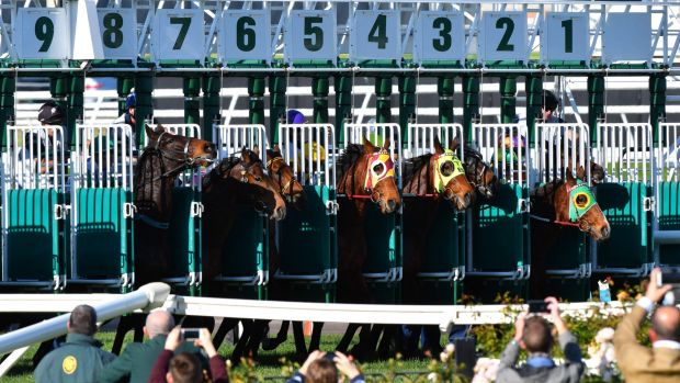 The start of Race 4, won by Falago (barrier 4) during Melbourne Racing at Flemington Racecourse on June 10, 2017.
