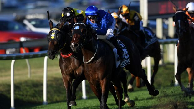 Full steam ahead: Impending races home in the Stradbroke at Doomben to give Darren Beadman his first group 1 as a trainer.