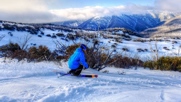 Skiers are flocking to Victoria's Alpine region as storm brings fresh snow.