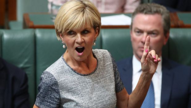 Foreign Minister Julie Bishop voiced her their frustration over the release of sensitive policy details.