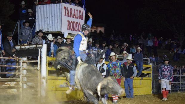 """In his blood"": Mitchell Gajkowski had dreamed of a bull riding career in the US."