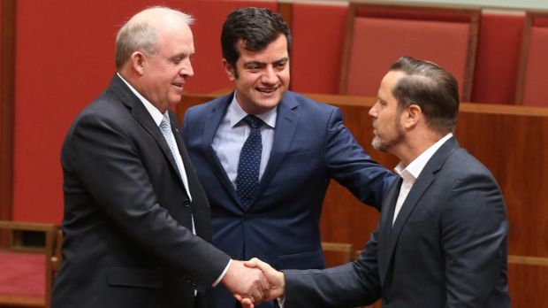 Greens senator Peter Wish-Wilson, born in Singapore is congratulated by Nationals senator John