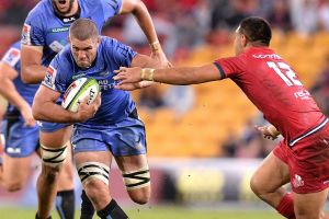 Tireless campaigner: Matt Hodgson of the Western Force,