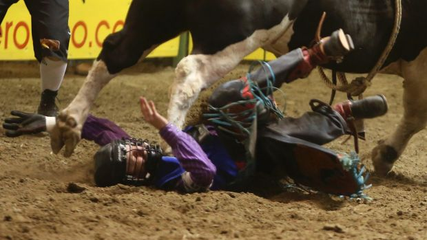 Australian man fights for life after bull-riding incident in the US