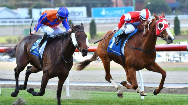 Beau Mertens riding Stylish Miss defeats Jye McNeil riding Mamzelle Tess in Race 4 during Melbourne Racing at Moonee ...