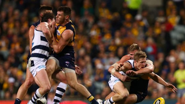 Luke Shuey bumps Patrick Dangerfield on Thursday night.